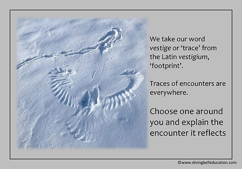 Creative Writing Prompt Card - Explain the traces of encounters around y