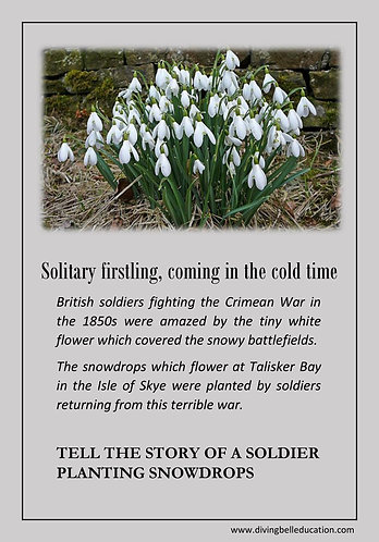Creative Writing Prompt Card - Write a Soldier's Story