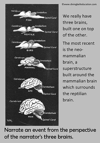 Creative Writing Prompt Card - The Three-Brain Narrative