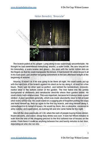 Texts and Human Experience Short Story: Helen Benedict, 'Binocular'