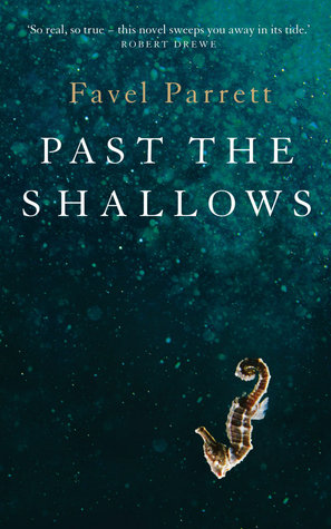 Texts and Human Experience Sample Essay and analysis: Past the Shallows