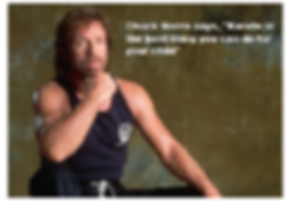 chuck-norris-says....png