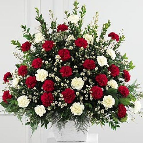 White and Red Carnations