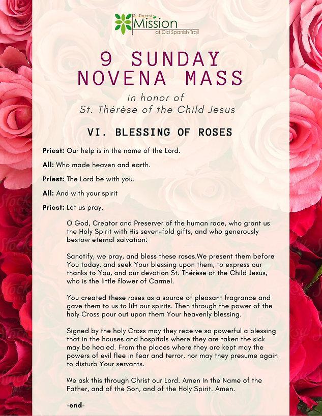 9 Sunday Novena - VI. Blessing of Roses.