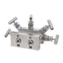 Direct Mounting for Differential Pressure Transmitter5 way 539 Astava