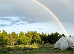 Little Waldo Farm