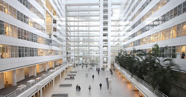 Gemeente-Den-Haag-1200x630-c-default.jpg