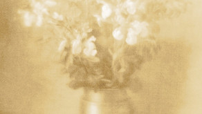 写真展のお知らせ:Haruhisaミニフォト展