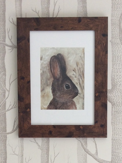 Baby Rabbit Giclee Art Print Signed & Framed