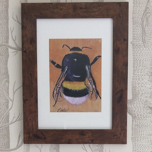 Buff Tailed Bee Giclee Art Print Signed Framed