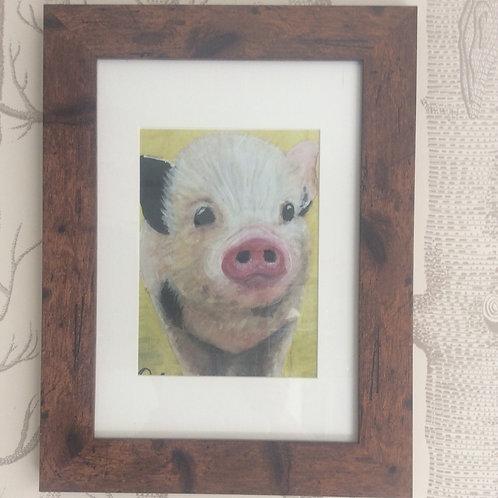 Cute Piglet Framed Giclee Print