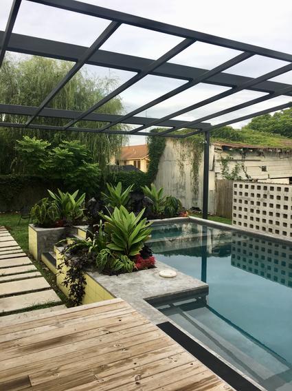 Pool Side Tropicals