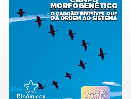 CAMPO MORFOGENÉTICO - O PADRÃO INVISÍVEL QUE DA ORDEM AO SISTEMA