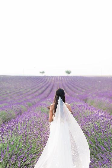 Jeremie Bertrand Photography Lavender Fi