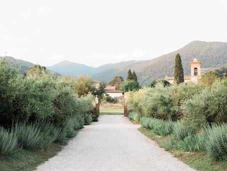 Why Consider a Vineyard for Your Wedding