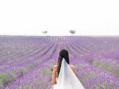A Lavender Affair