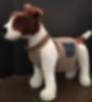 puppy collars, cool dog collars