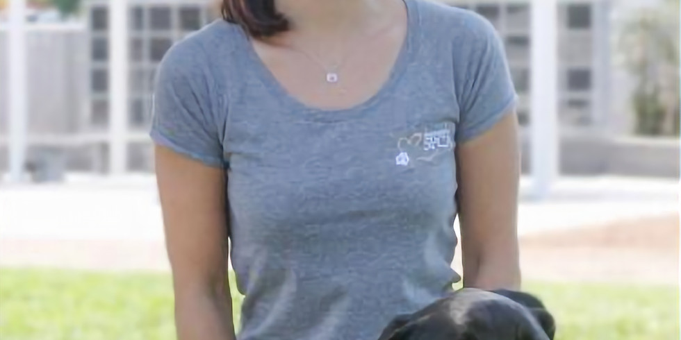 25th Annual SPCA Doggy Dash - Sacramento