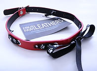 cool dog collars, leather dog collars, dog collars for sale