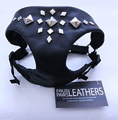Four Paws Leathers, leather leash and collar