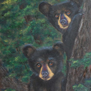 Cubs in the Treetops