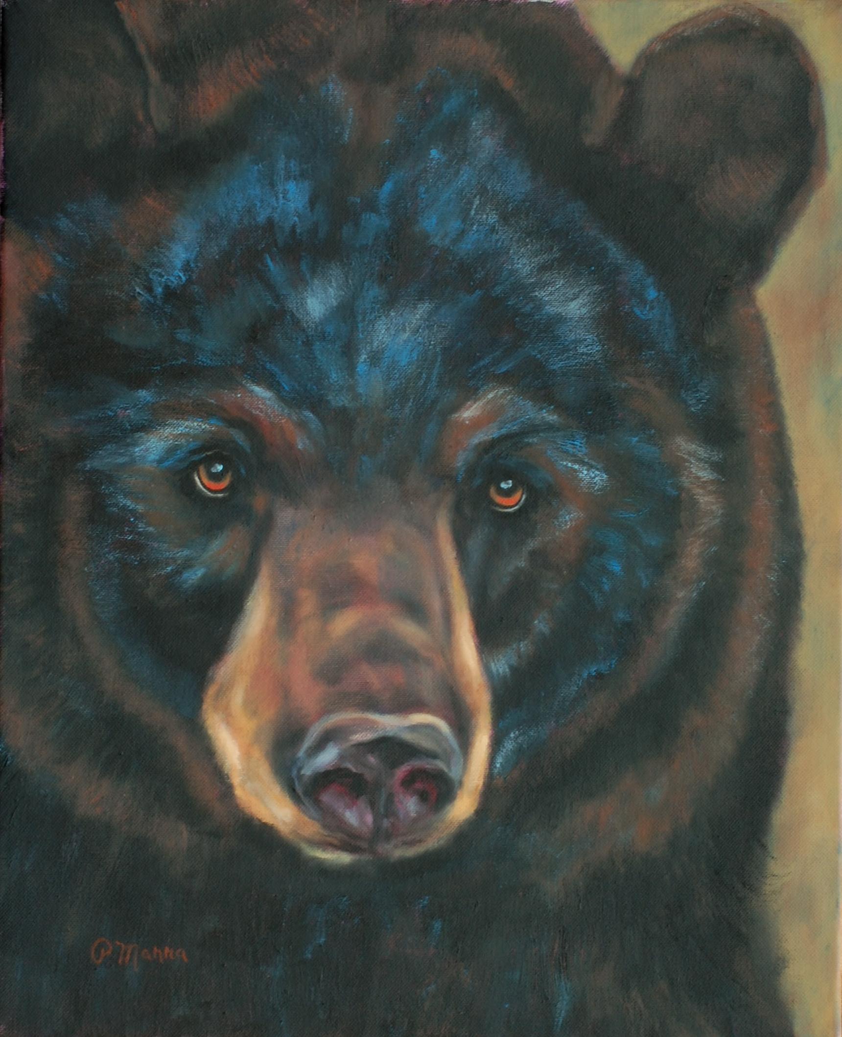 Curious Young Bear