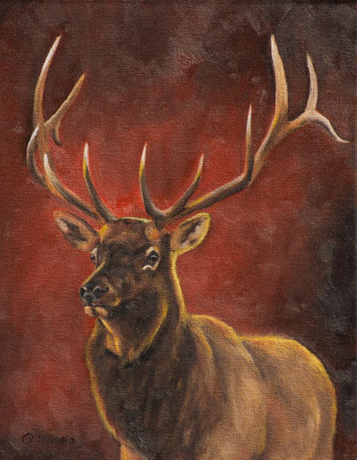 Magnificent Elk