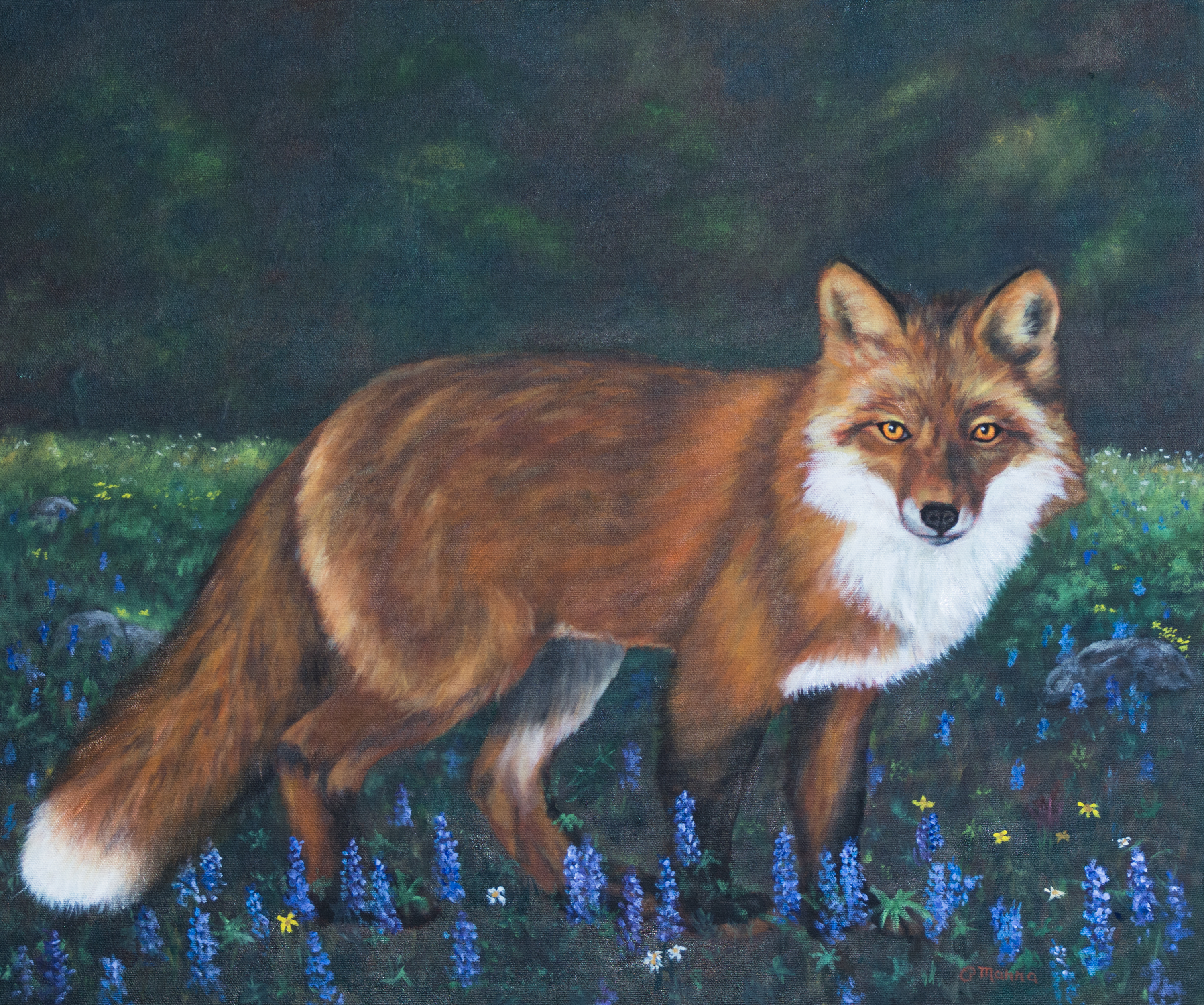 Red Fox in the Flowers
