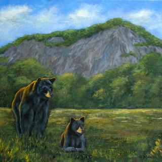 Bears of the Plateau