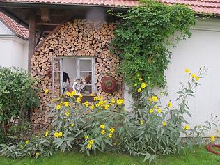AfterWork_Gänse & Gemüse_191004 (c) ÖKL (20).jpg