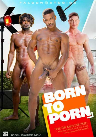 Born-to-Porn_1.jpg