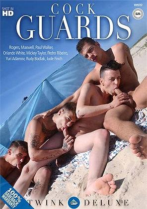 Bareback, Beach, Facials, Orgy, Outdoors, Rimming, Twinks