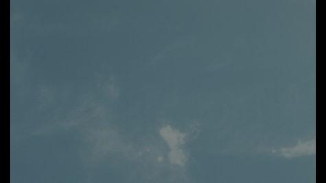 flu_1.1web6.jpg