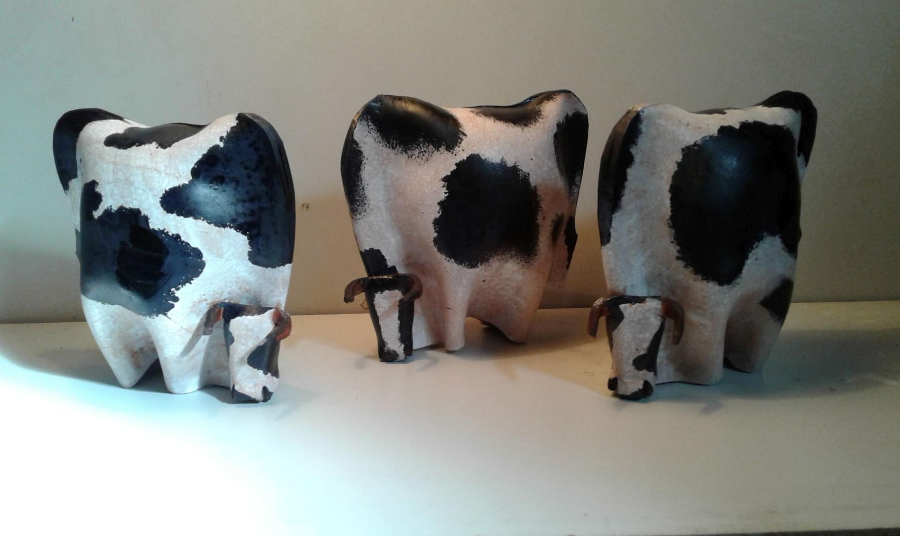 2 Vacas  Holando.jpg