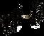 logo niels met ezel ping.png
