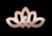 IFC_logo_couronne.png