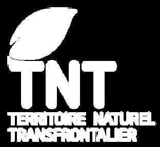 TNT_logo_vert_RVB.png