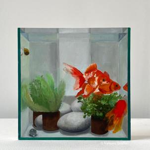 Fish Tank III