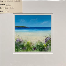 Cataclews, Harlyn Unframed £45