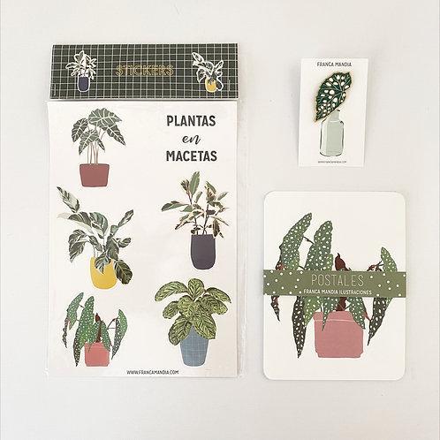 Pack Botánico