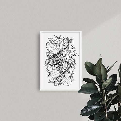 Print Orquídeas B&N