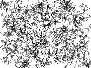 Untitled_Artwork 26.png