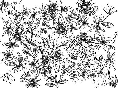 Untitled_Artwork 25.png