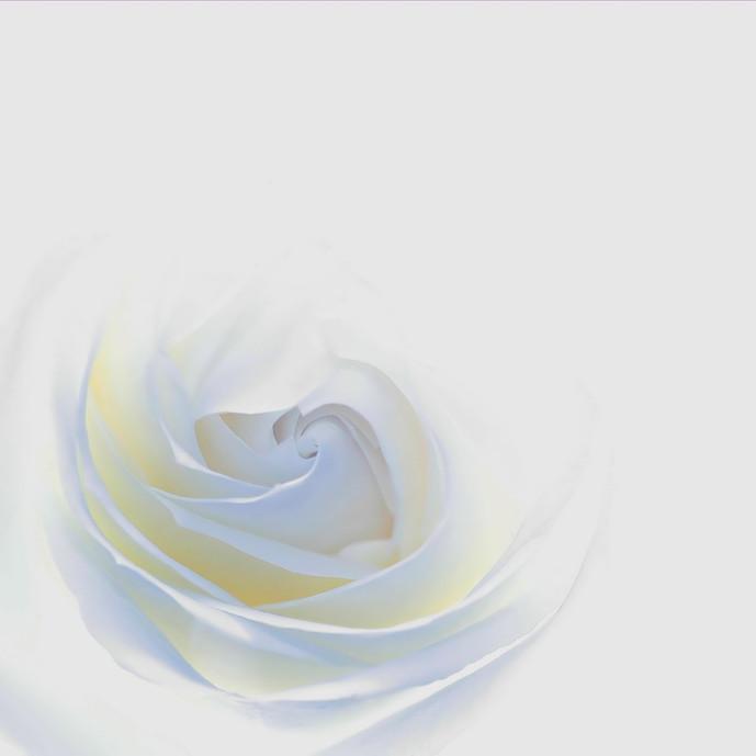 whitehot_filtered70x70_2.jpg
