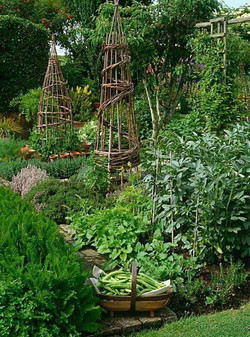 planning_an_herb_garden_—_THE_PLACE_HO