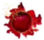 pomegranate-01_edited.png