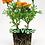 Thumbnail: Soil Vigor, 1 lb.