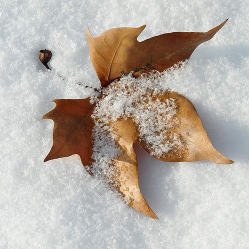 Christmas Fake Snow Decor