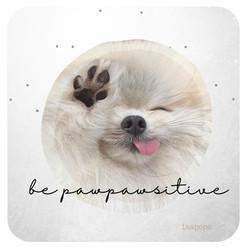 Be Pawpawsitive