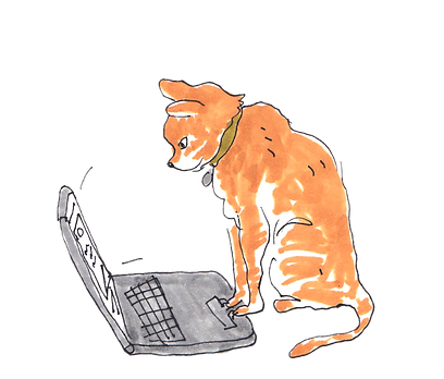 kitty writes  an email
